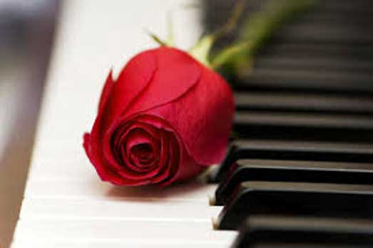 Piano with rose black and white